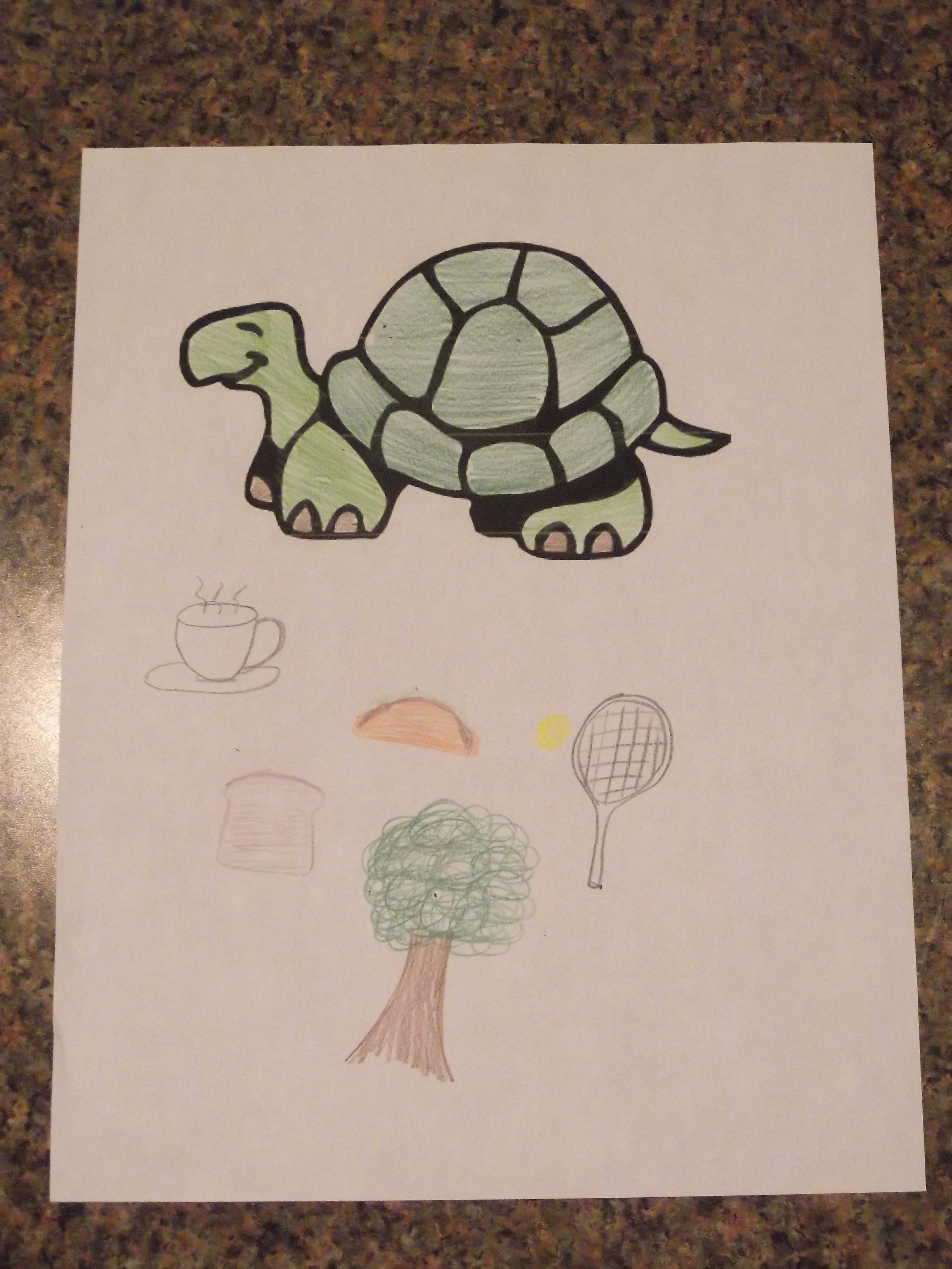 student essay on turtle A critique of the turtle the turtle is one chapter from john steinbeck's novel the grapes of wrath in this essay, steinbeck successfully uses both symbolism and figurative languages to describe a turtle's journey across the highway.
